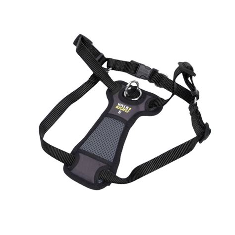 harness leash coastal pet coastal pet walk right padded harness black harnesses