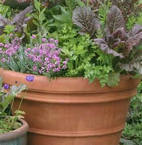 organic container gardening container gardening