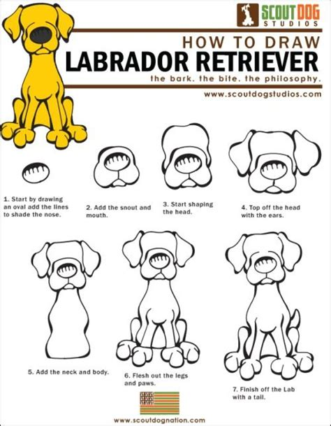 how to draw pdf 77 best images about illustration animals on