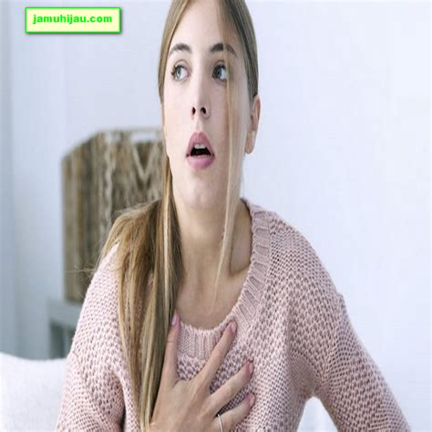 Obat Herbal Sesak Nafas Pada Ayam 5 obat sesak nafas alami yang aman dan mempan jamu hijau