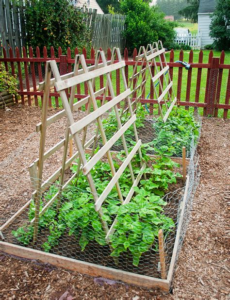 enolivier com vegetable garden with fence as long as dog proofing the garden the simple lens