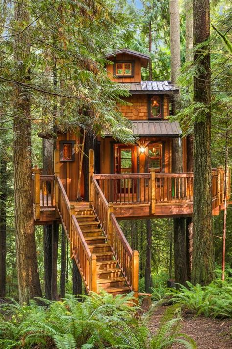 the treehouse barnes tree house plus normal one for sale in woodinville
