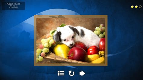 puppy puzzles puppy jigsaw puzzles wingamestore