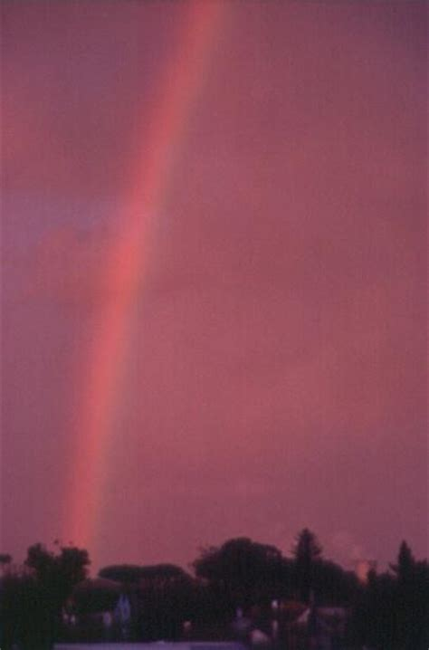 Rainbow Pink pink rainbow a poem by saiom all poetry