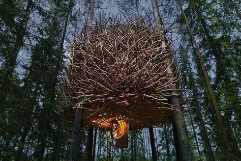 the treehotel in sweden for nature lovers 171 twistedsifter sweden s treehotel the classic tree house experience