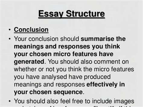 Fm1 How To Write The Micro Features Essay by Micro Essay Studies Writingbooks X Fc2