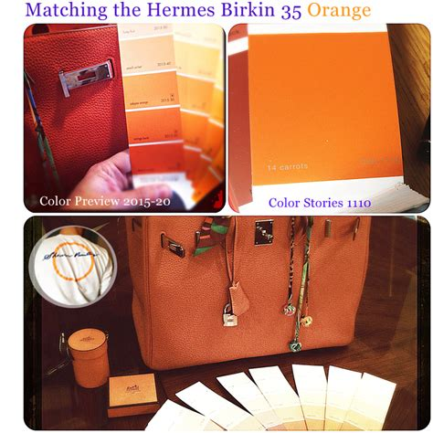 hermes birkin 35 matching the orange color shearer painting