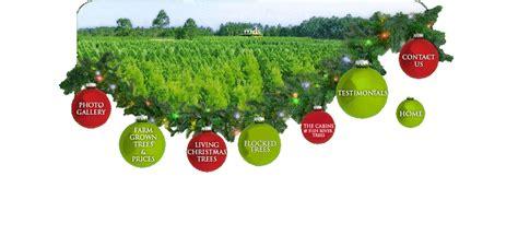 best 28 christmas tree farm prices 28 best christmas