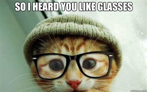Dog With Glasses Meme - 10 cats who think they are smarter in glasses