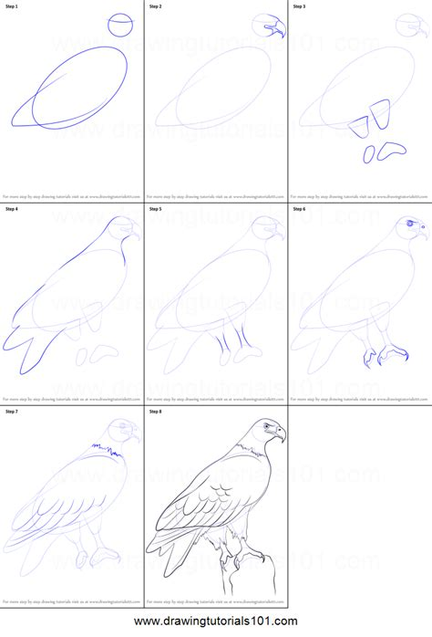 how to draw a doodle step by step how to draw a eagle printable step by step drawing sheet