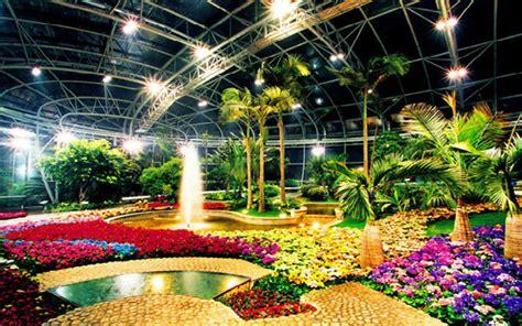 beijing botanical garden winter c