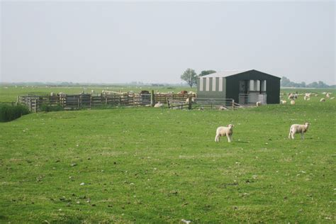 Sheep Sheds Ireland by Sheep Barn And Pens At Collyer S Farm 169 Oast House Archive