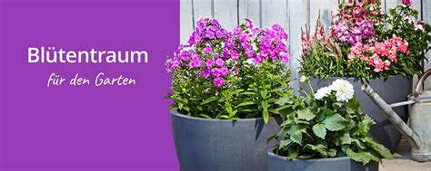 Pflanzen Shop 894 by Dehner Ihr Shop F 252 R Garten Pflanzen Balkon Tiere