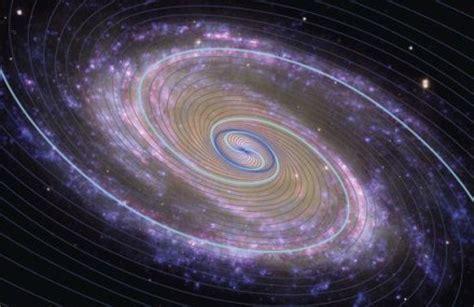 spiral pattern found in nature cosmometria spirale e nodi phi altrogiornale org