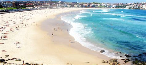 Bondi Beach Holiday Homes   Holiday Home Accommodation