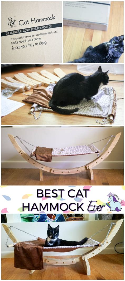 best hammock for cats and how to get your cat to it