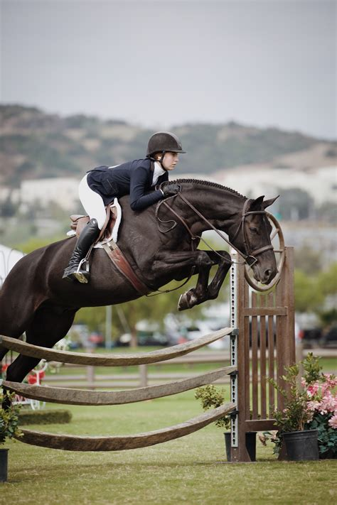 images english riding hunt seat rein show