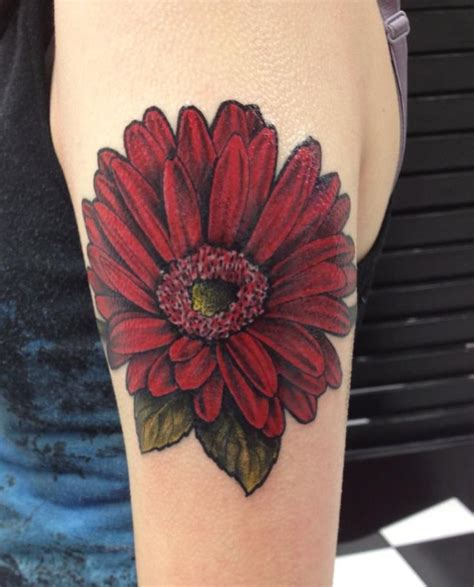 gerbera daisy tattoo 25 best ideas about gerbera on
