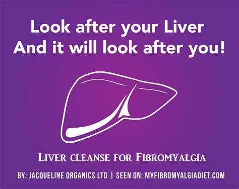 Liver Detox For Fibromyalgia look after your liver liver cleanse for fibromyalgia