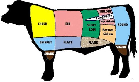 cow diagram cuts fierce of modern living