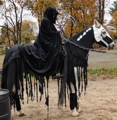halloween costumes  horses  original mane  tail