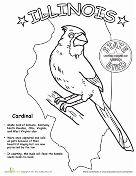 coloring page map of illinois illinois state bird worksheet education com