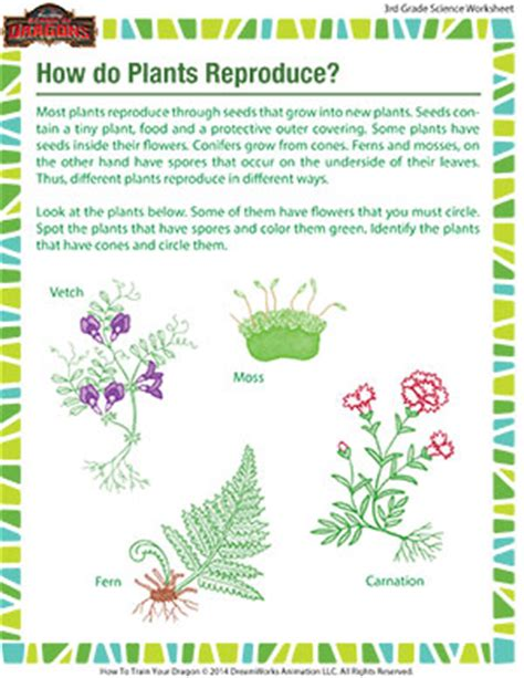 How Plants Reproduce Worksheet how do plants reproduce grade 3 science printable