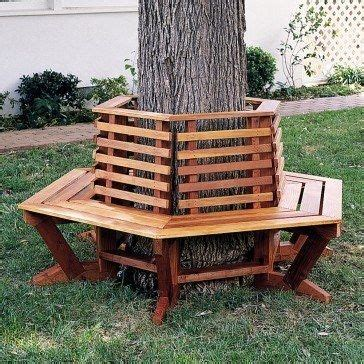 tree bench seat 17 best images about tree bench plans on pinterest