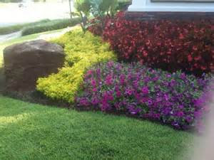 need suggestions with your annual flower beds the home