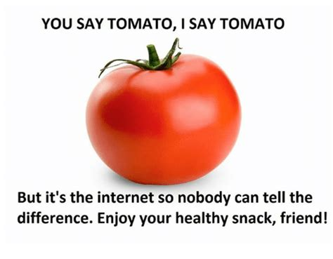 You Say Tomato I Say Tomato by 25 Best Memes About Tomato Tomato Memes