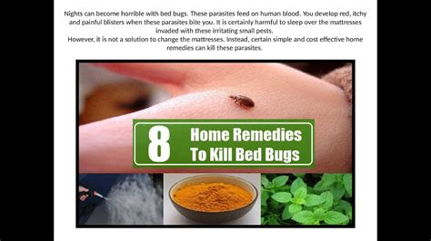 remedies for bed bugs turmeric powder for bed
