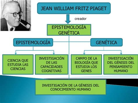imagenes mentales piaget pdf teoria genetica de jean piaget