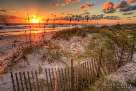 Landscape Photography In Florida Landscape Daytona Fl Tony Giese
