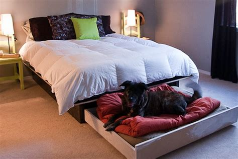 slide out bed hidden slide out bed under your bed for your dog tiny