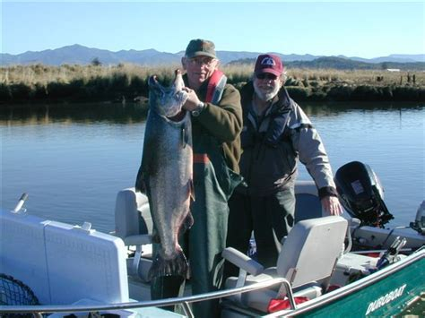 boat dealers elephant butte nm fun and fishing