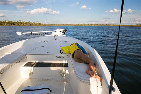 crystal river boating crystal river scalloping the hull truth boating and