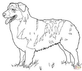 coloring pages of sheep dogs australian shepherd coloring page free printable