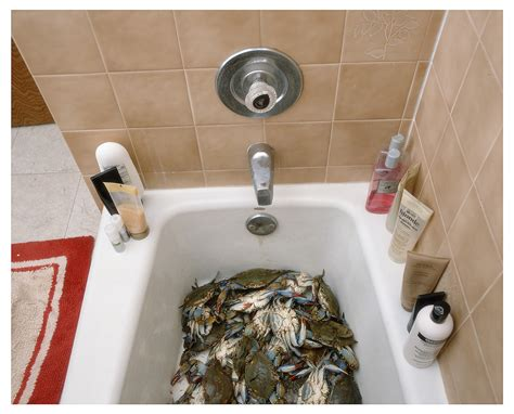 5 x 7 bathroom 4x5 bathroom pictures to pin on pinterest pinsdaddy
