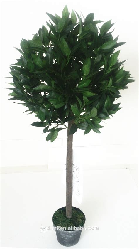 small indoor trees 100 small indoor trees slat back slim tall hall tree entry indoor small oak bench seat