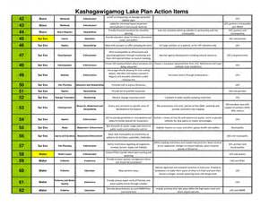 Action Items List Template Prioritized Action List Lake Kashagawigamog Organization