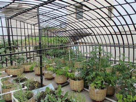 Terrace Veggies Vegetable Garden On Terrace India