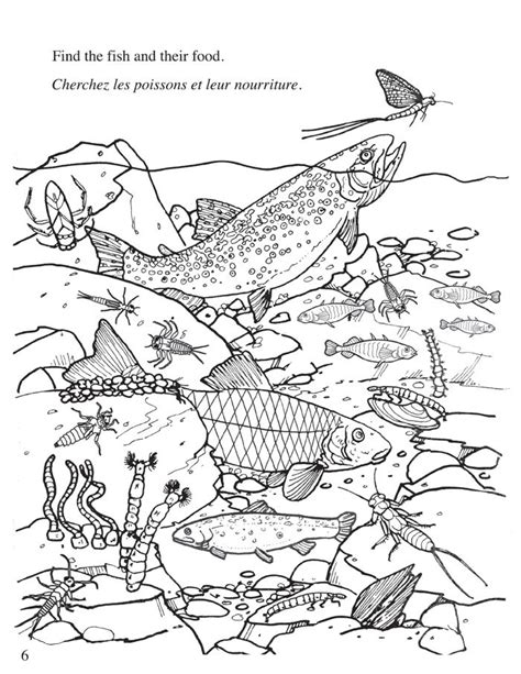 coloring pages of freshwater fish freshwater ecosystem coloring pages coloring pages