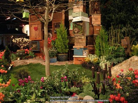 Pacific Northwest Flower And Garden Show Pacific Northwest Gardening Forum Nw Flower And Garden Show 2015 Garden Org