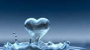 lmagenes de corazones en agua con rosas y aves coraz 243 n de agua 1920x1080 hd fotoswiki net