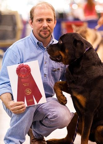 rottweiler pulling competition new page 1 www thedogplace org