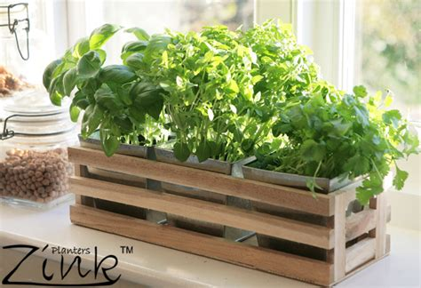 herb garden box kitchen herb trough windowsill planter with 3 steel