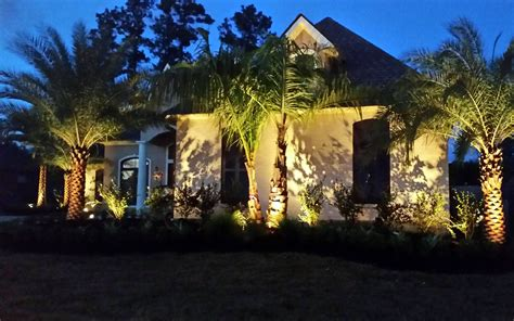 Landscape Lighting Palm Trees Landscape Lighting Baton La Landscape Baton