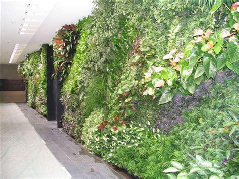 pflanzenwand selber machen pflanzen wand ihre inspiration zu hause