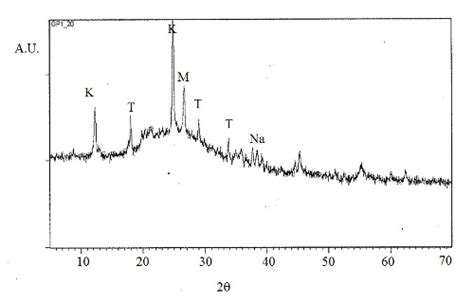 xrd pattern muscovite mechanical and biological characterization of geopolymers