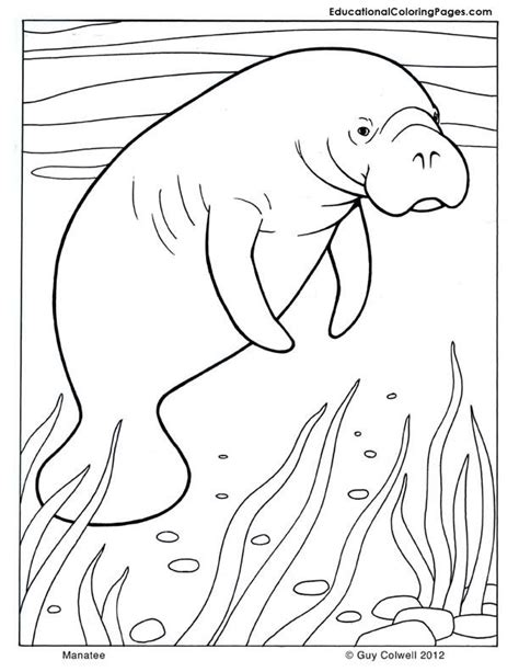 preschool ocean coloring pages az coloring pages